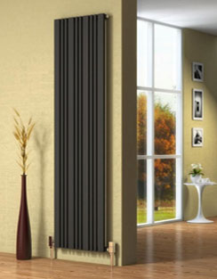 More info Reina Bonera 456 x 1800mm Anthracite Designer Radiator