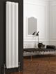 Reina Colona 380 x 1800mm 2 Column Vertical Radiator White